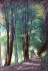 Trees along a lane (Bollene)
